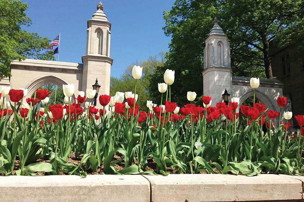 Indiana University - Intensive English Program