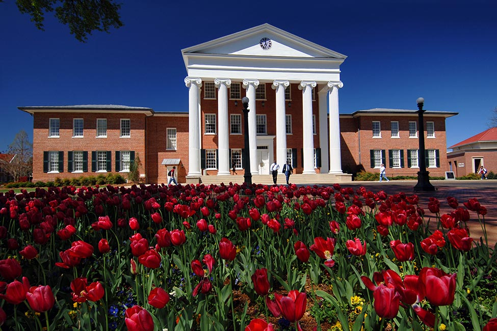 University of Mississippi  main image