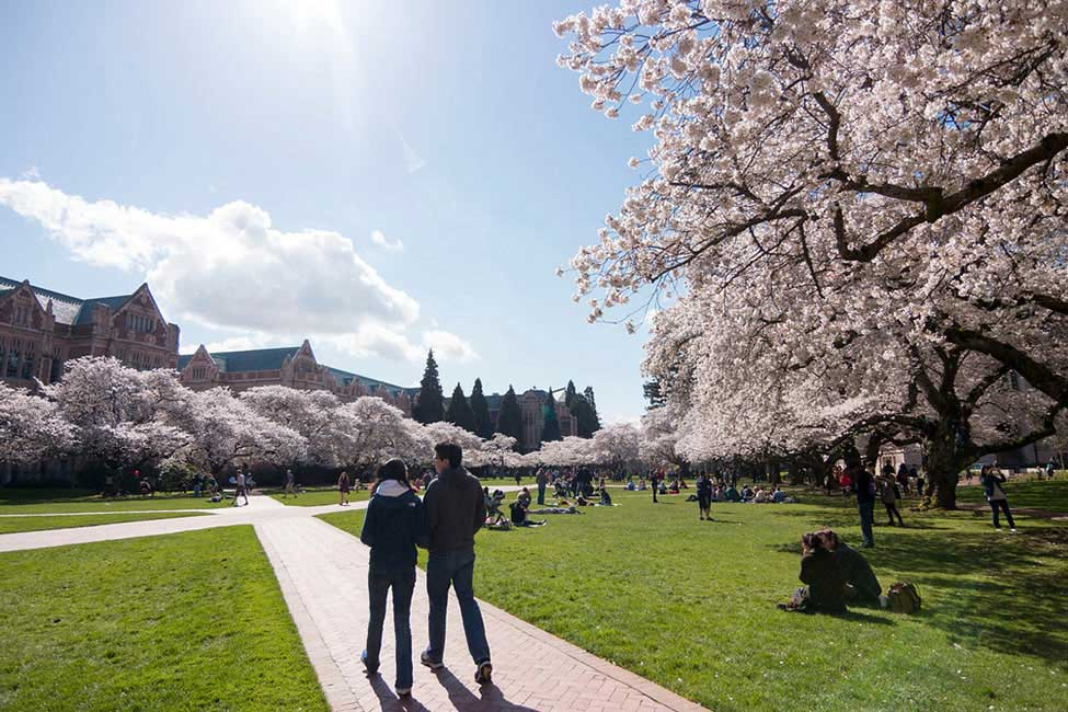 University of Washington ESL