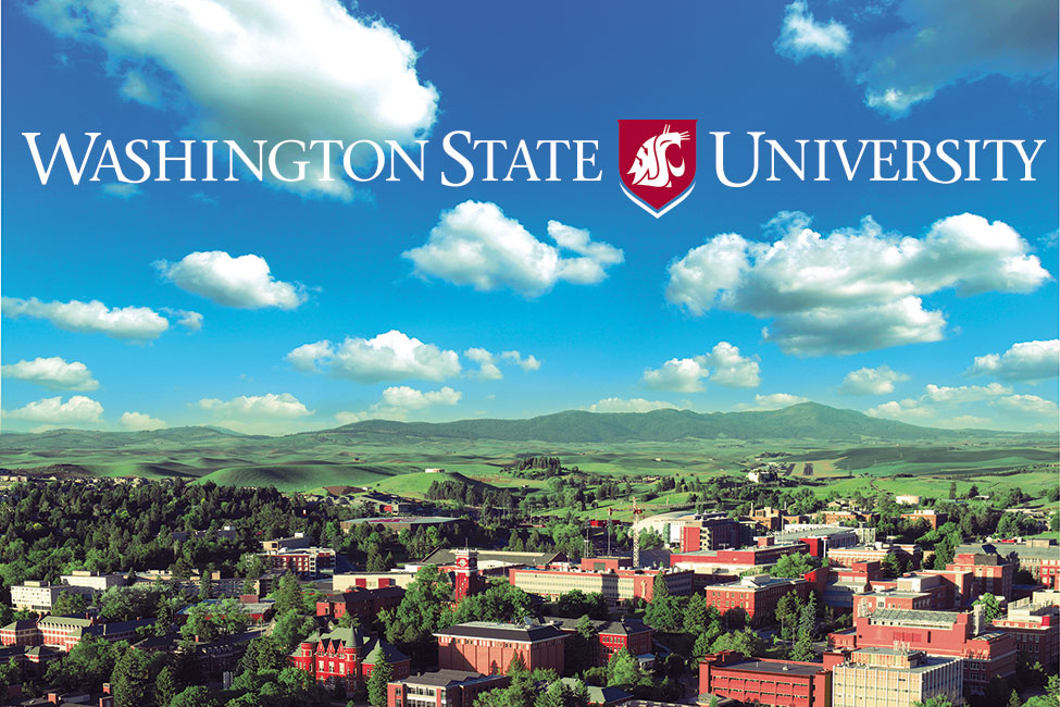 Washington State University sponsored listing logo