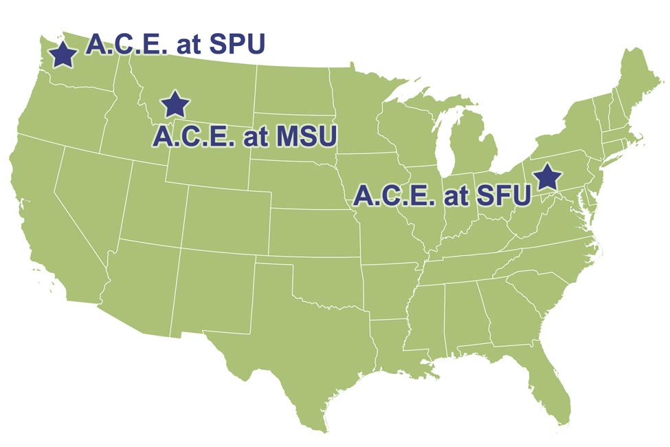 A.C.E. Language Institutes