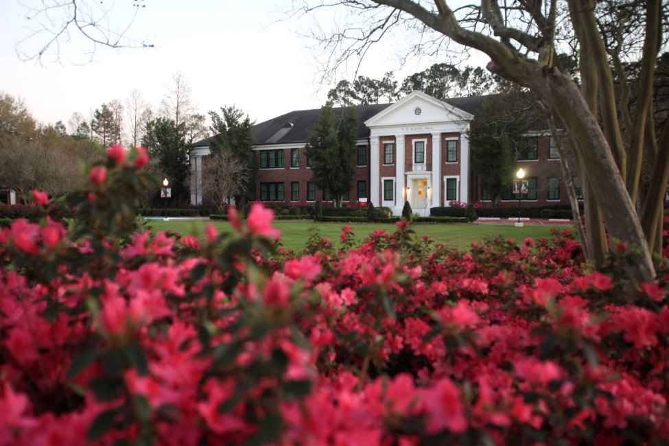 Image of Nicholls State University